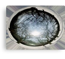 EARTH CENTERED Canvas Print