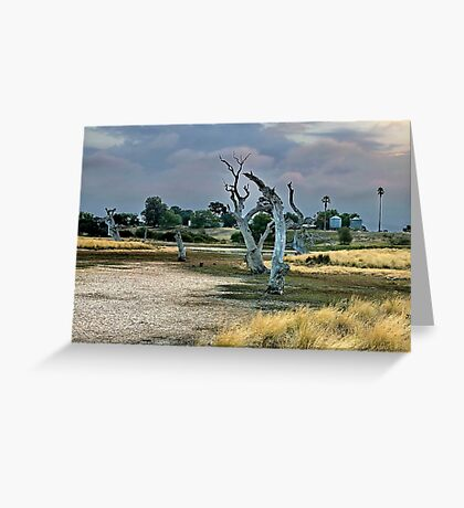 """Dry Parched Land"" Greeting Card"