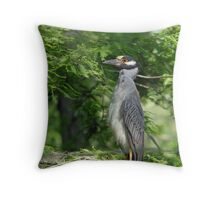 Yellow Crowned Night Heron Mother Throw Pillow