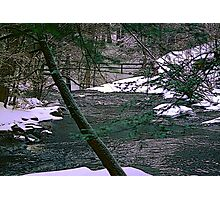 Winter in Childe State Park Photographic Print