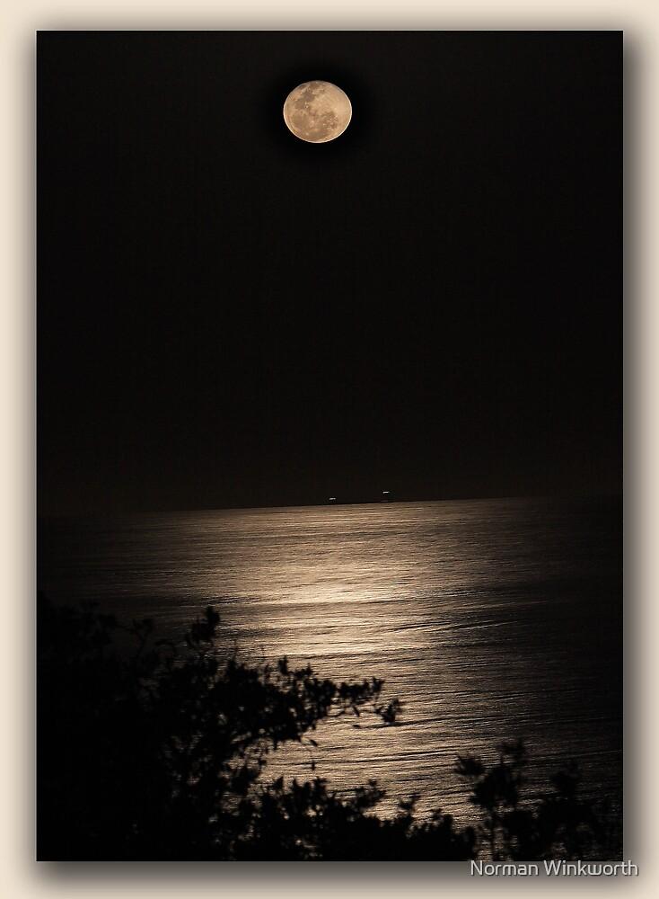 Moon on Water by Norman Winkworth