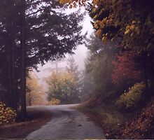 Fall on Cade Mountain by TimsWorld