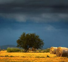Hay Bales by Hans Kawitzki