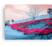Behind the wall Canvas Print