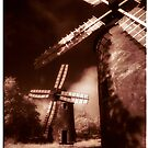 Windmills of your mind by ragman