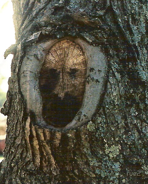 mom's man in the tree by rue2