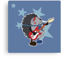 Ziggy plays guitar Canvas Print
