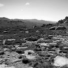 Alpine Australia by miclile