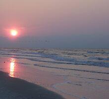 Hilton Head-Coligny beach 5:30 a.m. by jmasbury