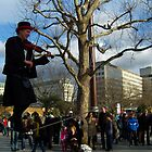 fiddler on a rope by photogenic