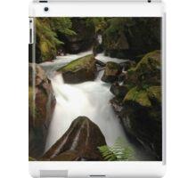 Waterfall in Glacier National Park iPad Case/Skin