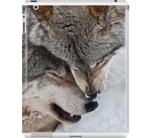 Special Moment iPad Case/Skin