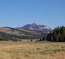 Home on the Range by Michael Houghtalin