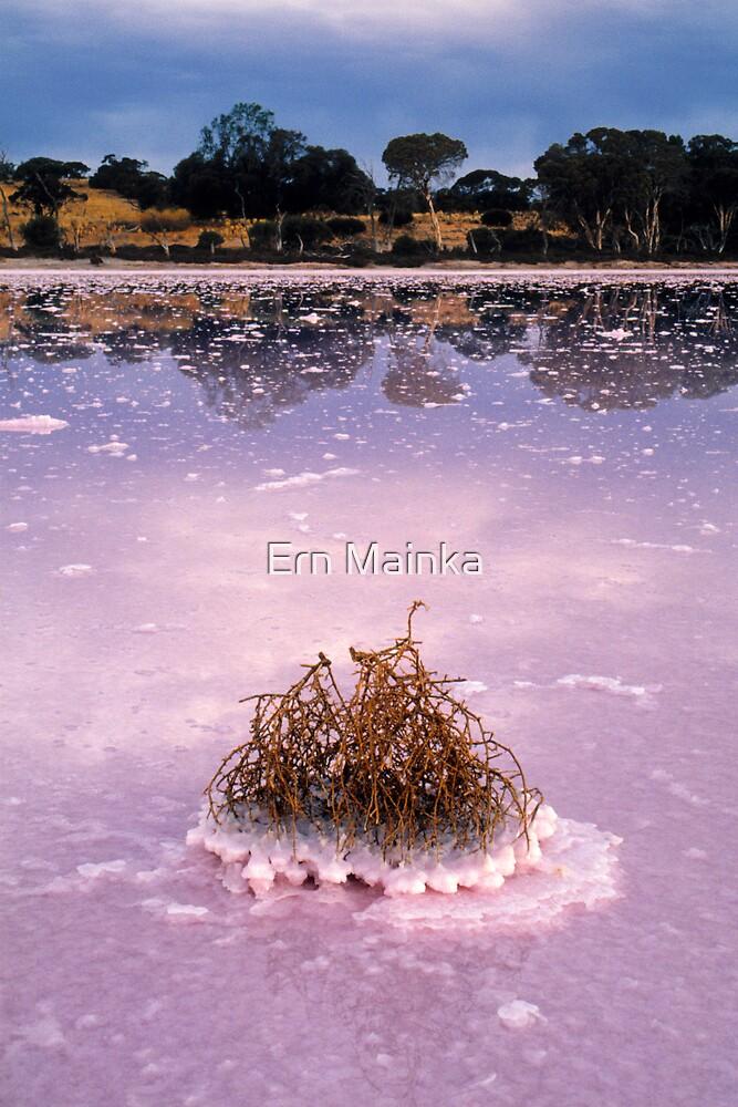 Pink Lakes II by Ern Mainka