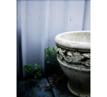Not So Grecian Urn Photographic Print