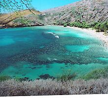 Hanauma Bay by Cheeseya024
