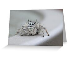 I am watching you! Greeting Card