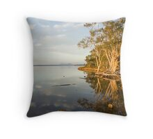 Reflection on a New Day Throw Pillow