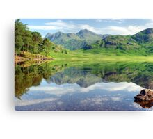 The Ripple in the Reflection Canvas Print