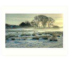 The Frozen Meadow Art Print