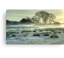 The Frozen Meadow Canvas Print