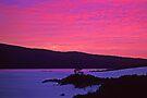 Barracoota Sunrise by Travis Easton