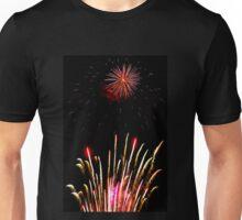 Garden of Light Unisex T-Shirt