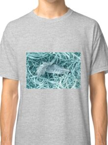 Frosty Leaves 1 Classic T-Shirt