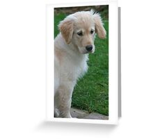 Does somebody want to come and play with me? Greeting Card