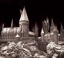 Harry potters school of wizardry, on the way up to Hogwarts by miradorpictures