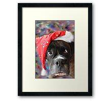 I've Been Good... Where's My Treat? -Boxer Dogs Series- Framed Print