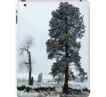 Winter Wonderland #7 iPad Case/Skin