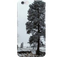 Winter Wonderland #7 iPhone Case/Skin