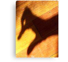 Duck Shadow Canvas Print