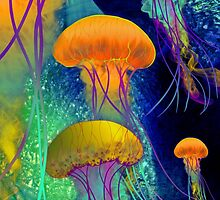 Jellyfish Journeys, Vibrantly Colorful Sea-Life Art. by margaretdill
