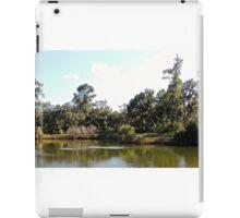 Mt. Pleasant Pond iPad Case/Skin