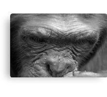 Chimp Think Canvas Print