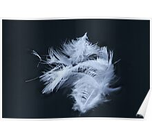Feathery Poster