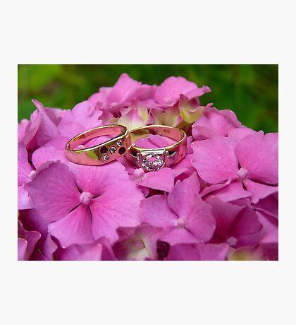 Wedding Rings - Pink Hydrangea - NZ Photographic Print