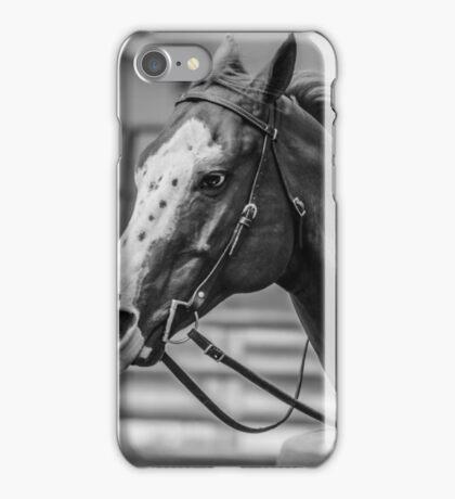 Fair Horse iPhone Case/Skin