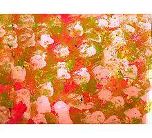 Cloth Painting Photographic Print