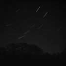 Ursa Major Star Trail by Dave Pearson