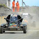 Dusty by Donald  Stewart