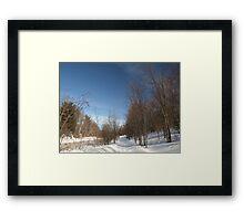 P2030095 Winter scene Framed Print