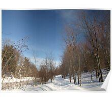 P2030095 Winter scene Poster