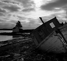 Brooding Wreck by Sandy  McClearn