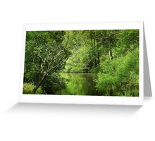 Still Forest Lake Greeting Card