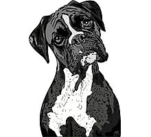 Black and White Boxer Art Photographic Print