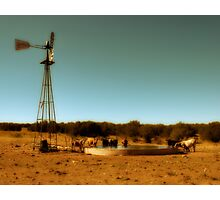 Cowboy Infinity Pool Photographic Print
