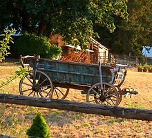 The old wagon  by Starlisa
